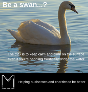 Be a swan MYM branded